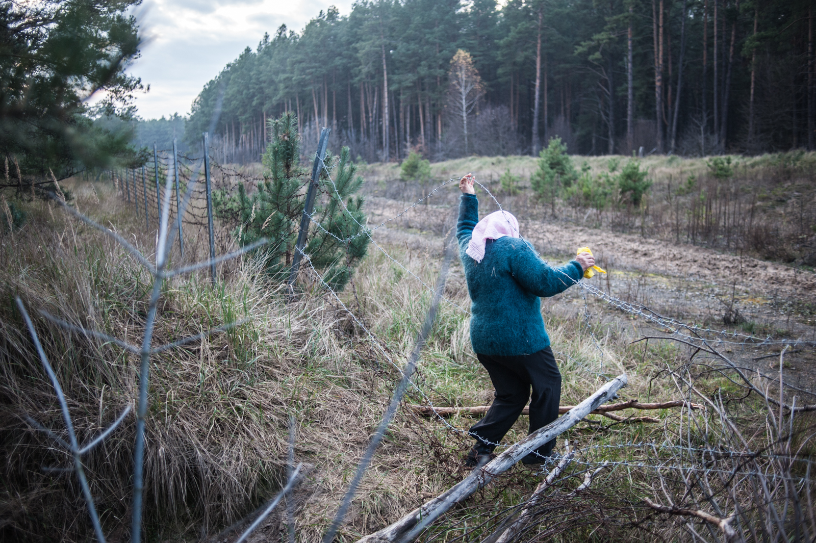 A woman illegally crosses into the forbidden forests of the Exclusion Zone